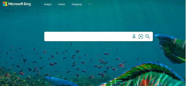 Bing de los mejores buscadores de internet desarrollado por microsoft