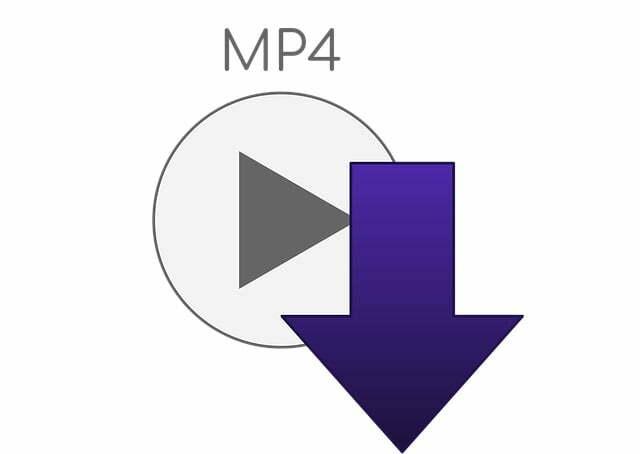 ¿Se puede convertir un archivo con extensión MP4?