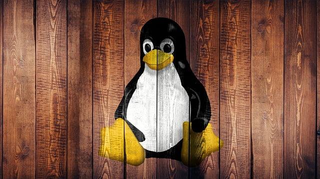 ¿Cómo ejecutar y reproducir ficheros  MP4 en una computadoras con Linux?
